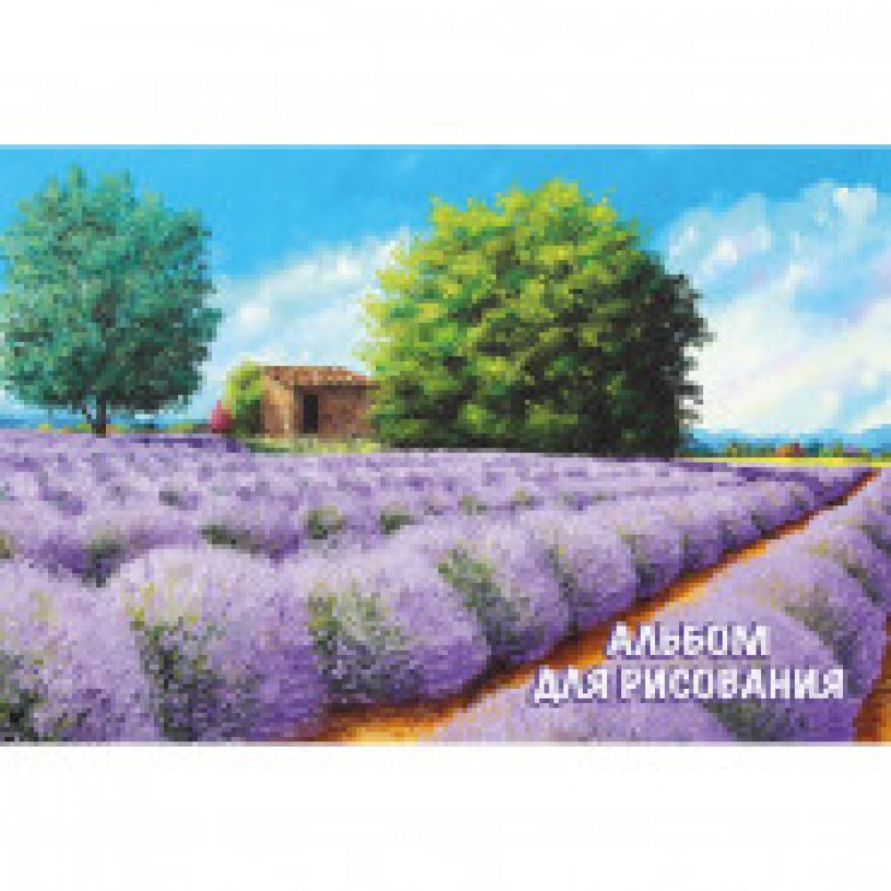 Альбом для рисования 20л А4,склейка 9602/2 MGL 2вида