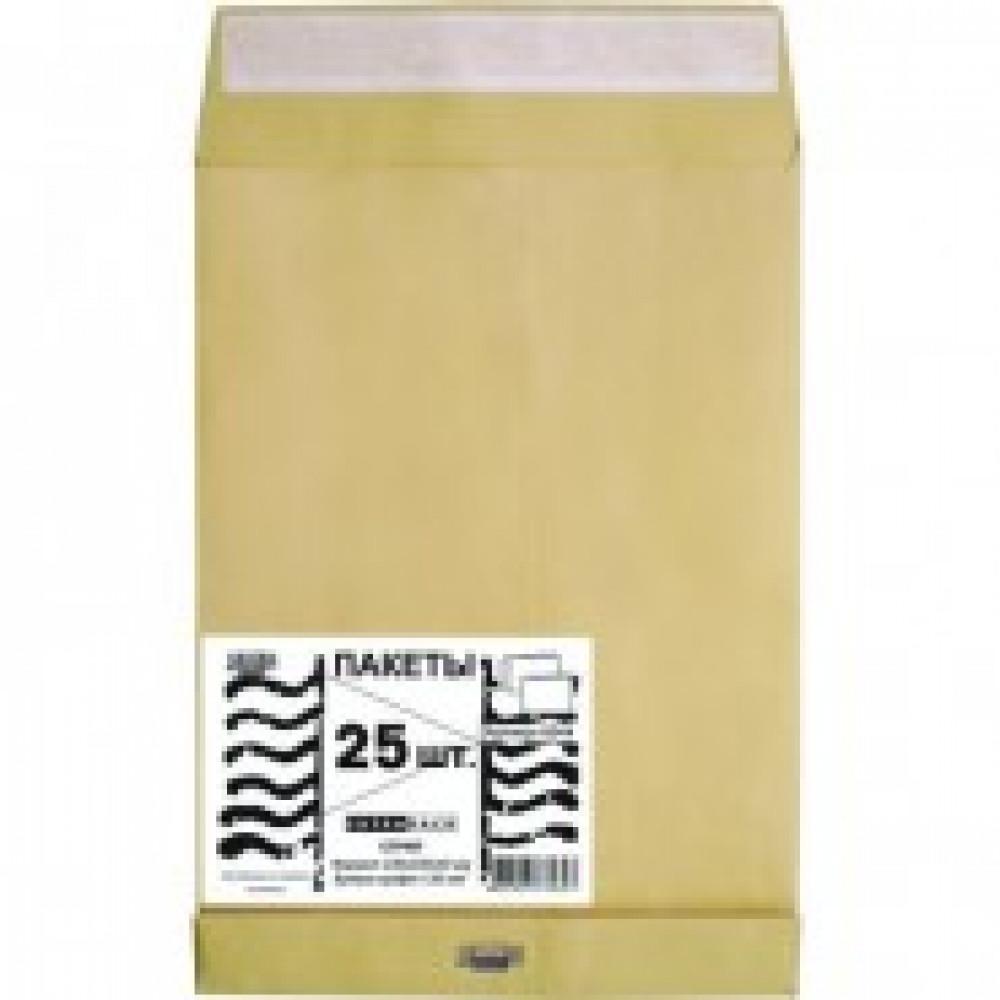 76391 Пакеты в упаковке Крафт С4стрип Extrapack 229х324 100г25шт/уп/6544