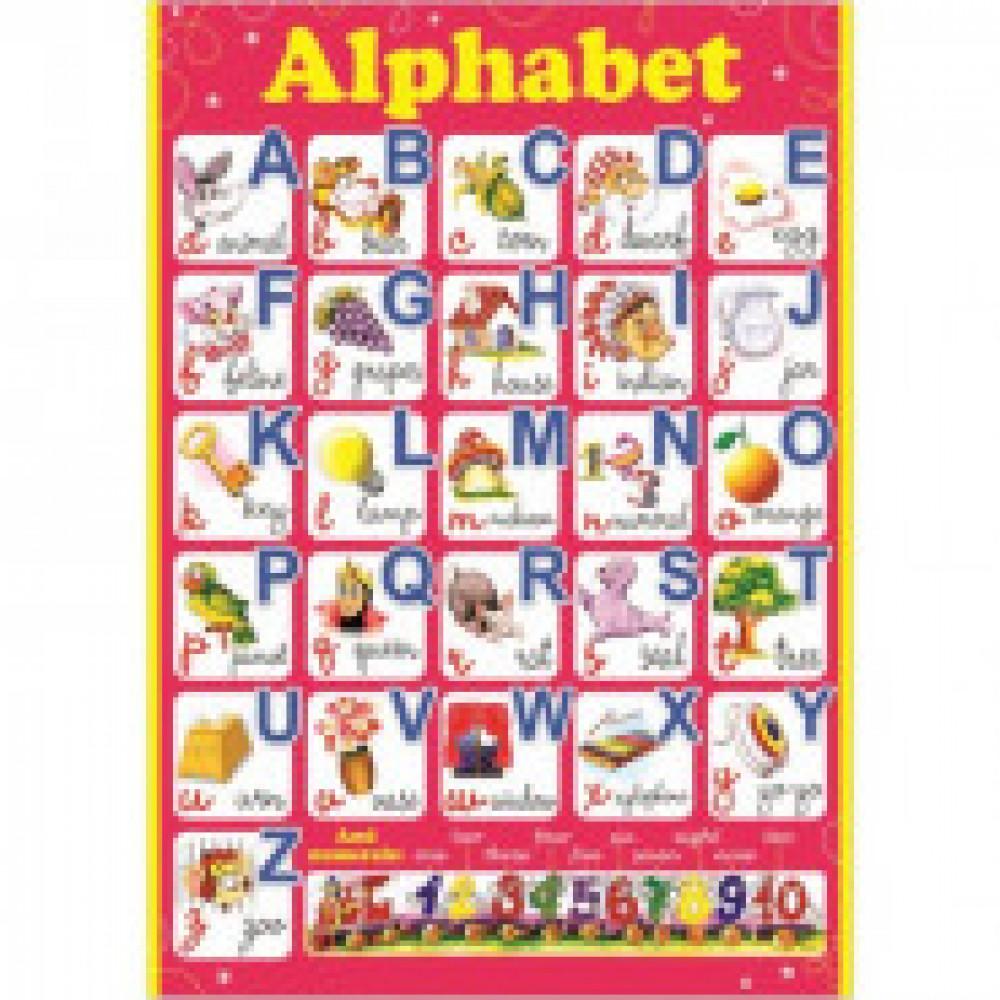 Плакат Alphabet, 490х690, 18523