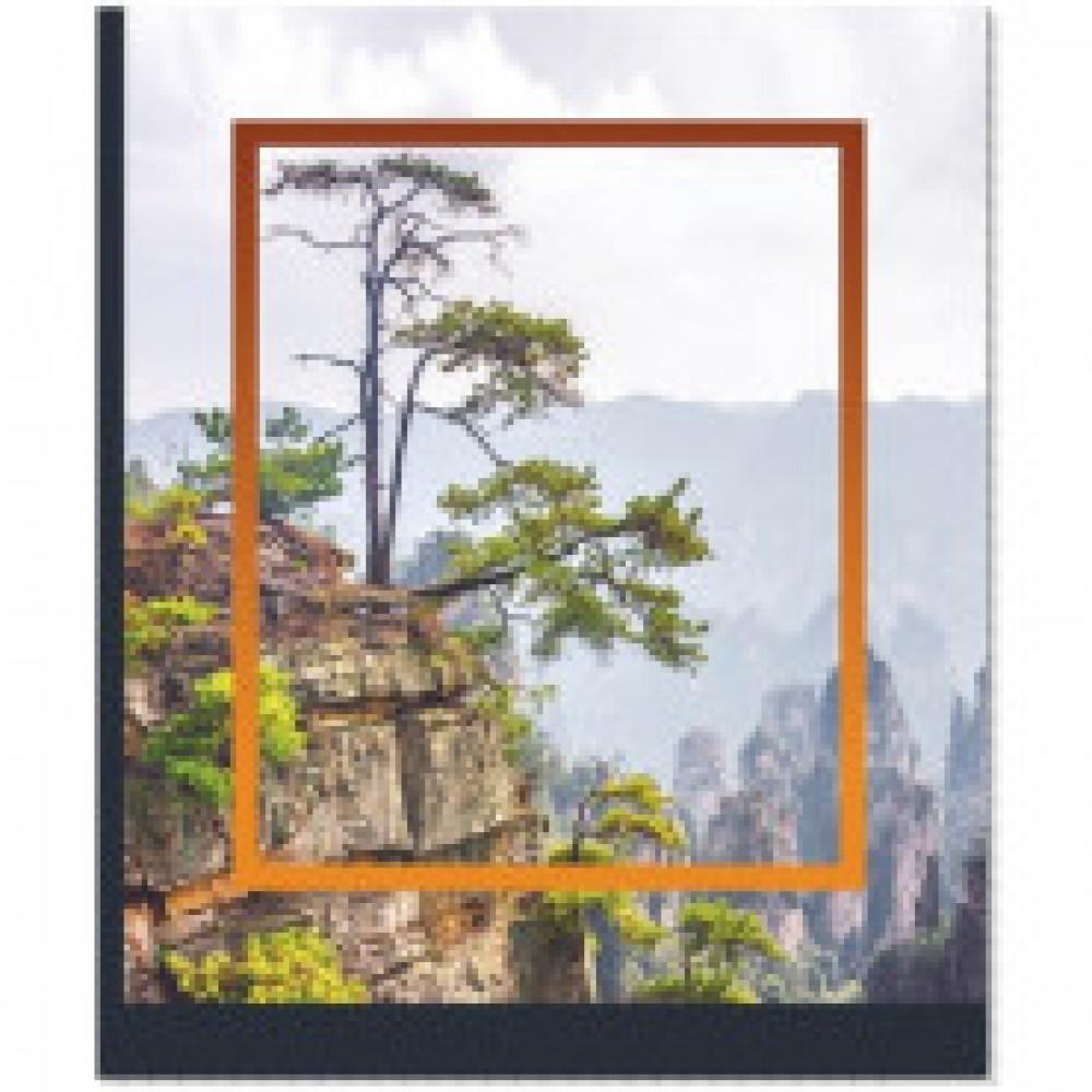 Тетрадь общ №1 School Nature Утес,48л. скрепка,обл.мелов.карт,выб. УФ-лак