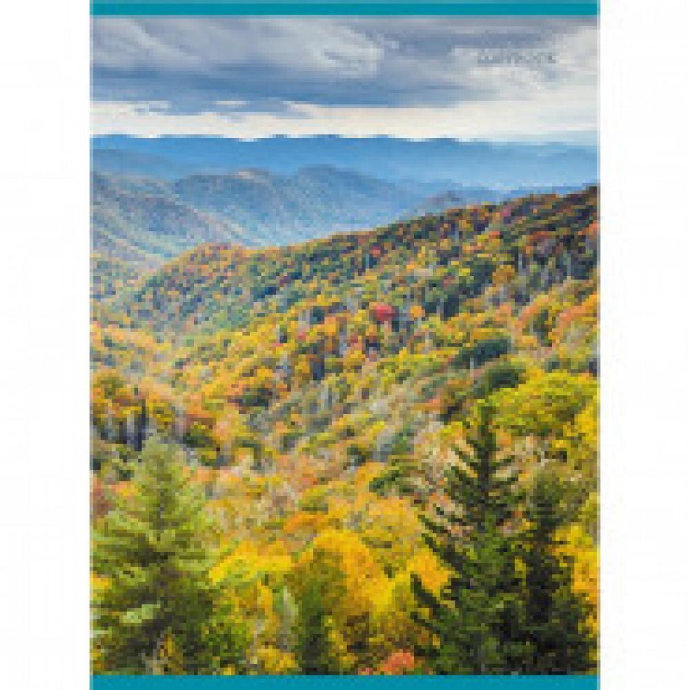 Бизнес-тетрадь A4,48л,кл,обложка хромэрзац,скрепка Осенний пейзаж Т4484604